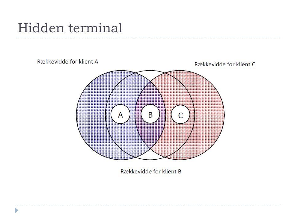 Hidden terminal