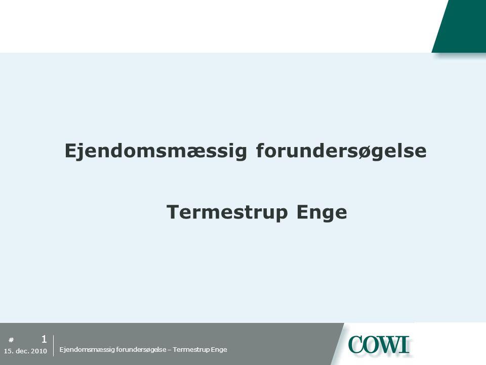 # Ejendomsmæssig forundersøgelse Termestrup Enge 1 15.