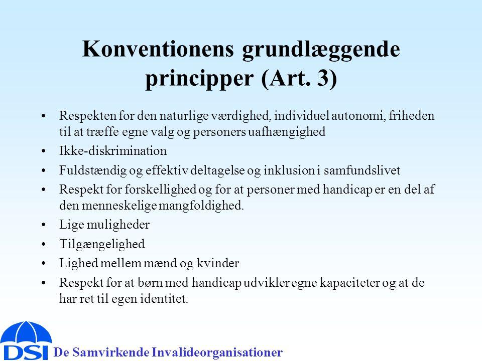 De Samvirkende Invalideorganisationer Konventionens grundlæggende principper (Art.