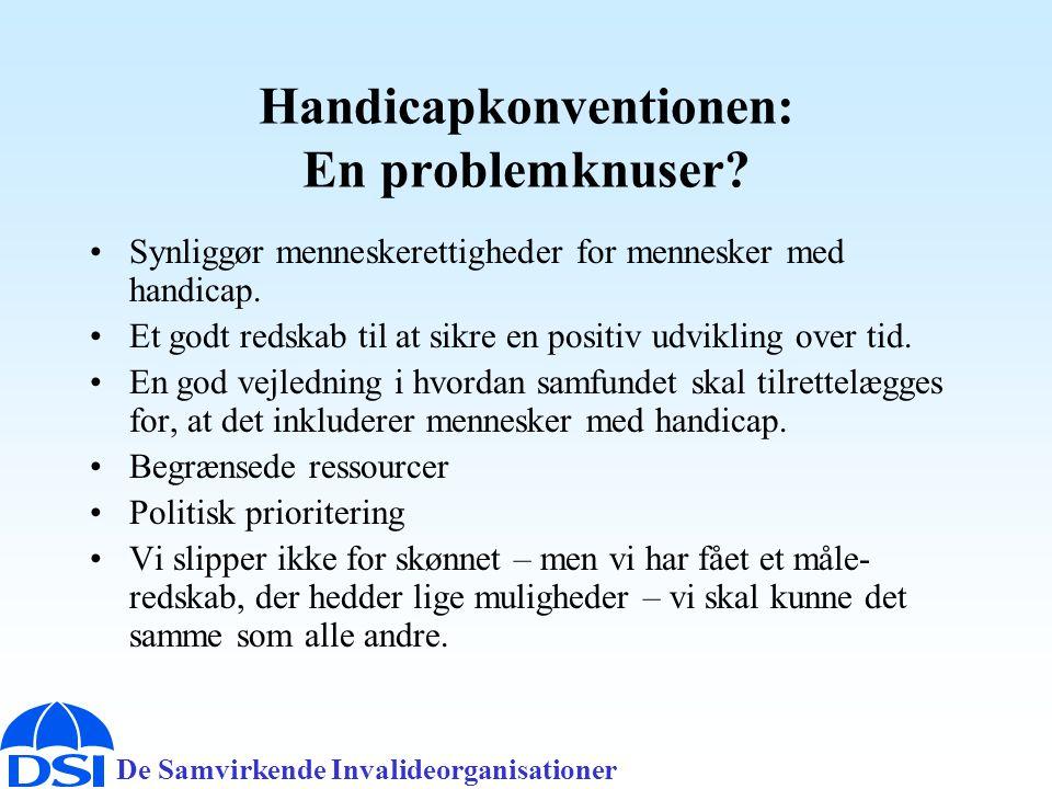 De Samvirkende Invalideorganisationer Handicapkonventionen: En problemknuser.