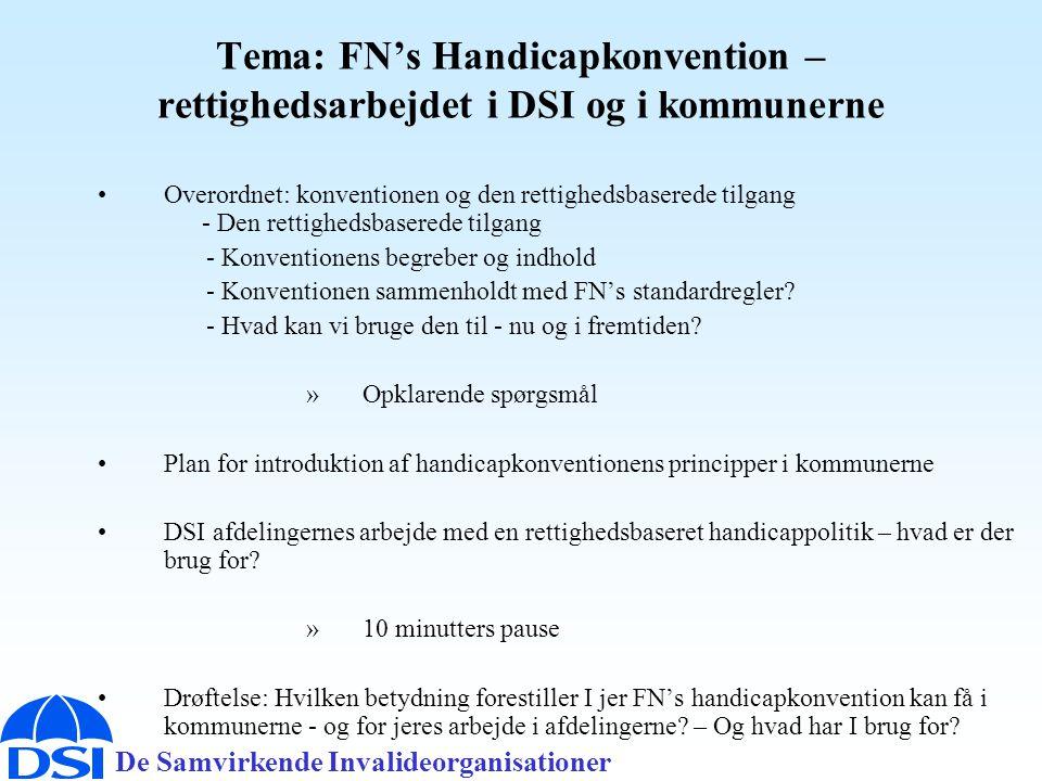 De Samvirkende Invalideorganisationer Tema: FN's Handicapkonvention – rettighedsarbejdet i DSI og i kommunerne •Overordnet: konventionen og den rettighedsbaserede tilgang - Den rettighedsbaserede tilgang - Konventionens begreber og indhold - Konventionen sammenholdt med FN's standardregler.