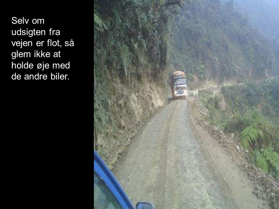 Selv om udsigten fra vejen er flot, så glem ikke at holde øje med de andre biler.