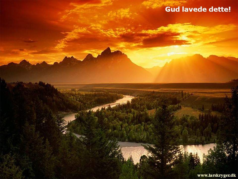 Gud lavede dette! www.larskryger.dk