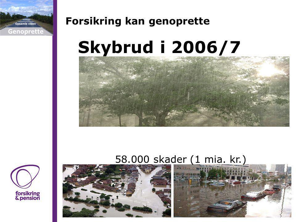 Forsikring kan genoprette Skybrud i 2006/7 58.000 skader (1 mia. kr.)