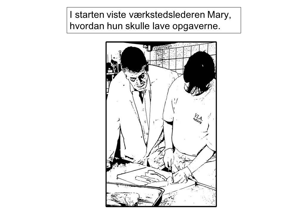 I starten viste værkstedslederen Mary, hvordan hun skulle lave opgaverne.