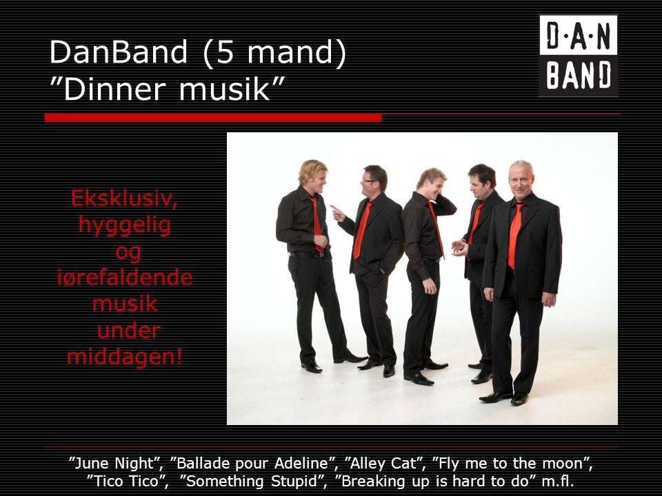 DanBand (5 mand) Dinner musik Eksklusiv, hyggelig og iørefaldende musik under middagen.