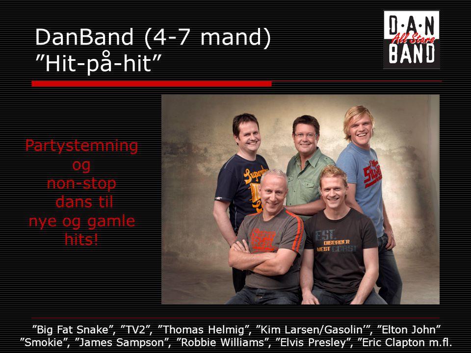 DanBand (4-7 mand) Hit-på-hit Partystemning og non-stop dans til nye og gamle hits.