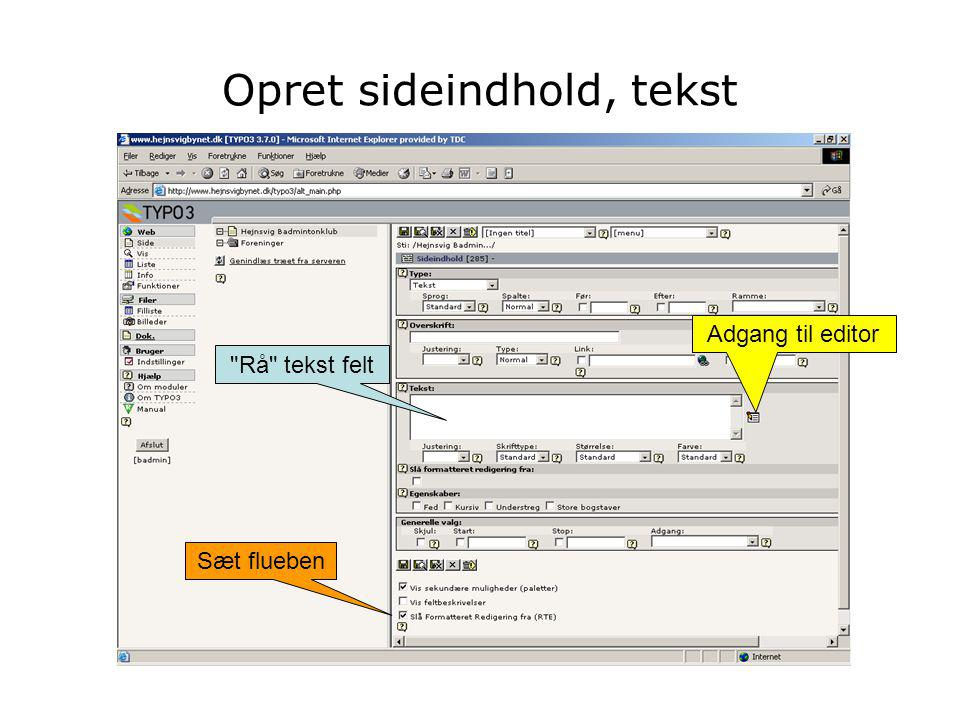 Rå tekst felt Adgang til editor Sæt flueben
