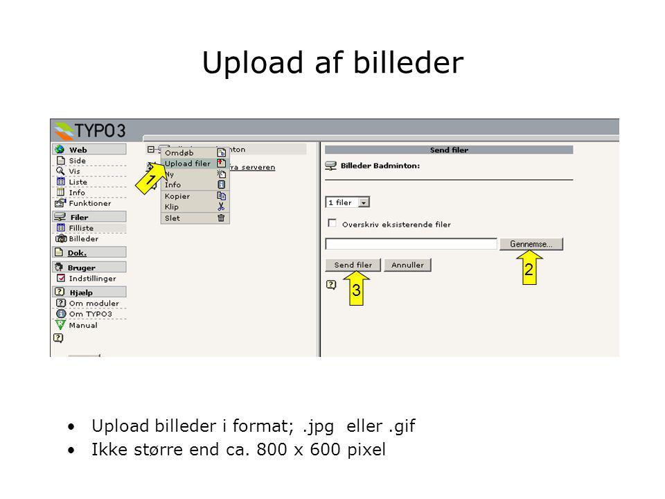 •Upload billeder i format;.jpg eller.gif •Ikke større end ca. 800 x 600 pixel 1 2 3