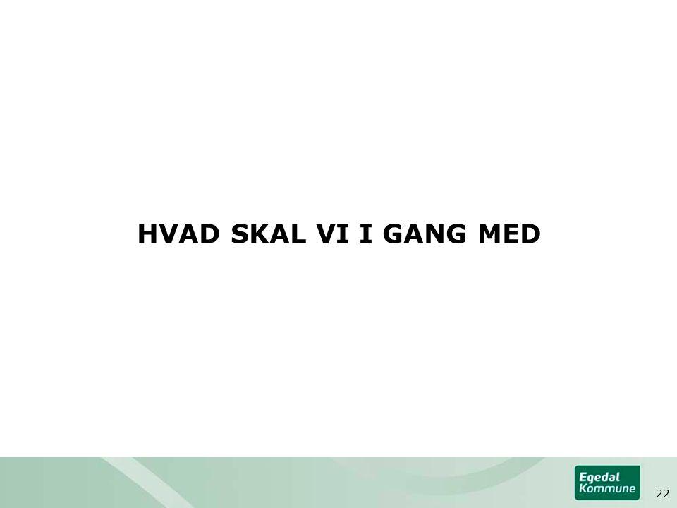 HVAD SKAL VI I GANG MED 22