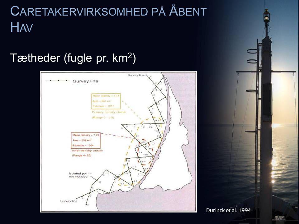 C ARETAKERVIRKSOMHED PÅ Å BENT H AV Tætheder (fugle pr. km 2 ) Durinck et al. 1994