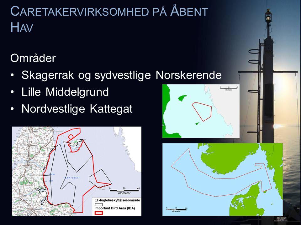 Områder •Skagerrak og sydvestlige Norskerende •Lille Middelgrund •Nordvestlige Kattegat