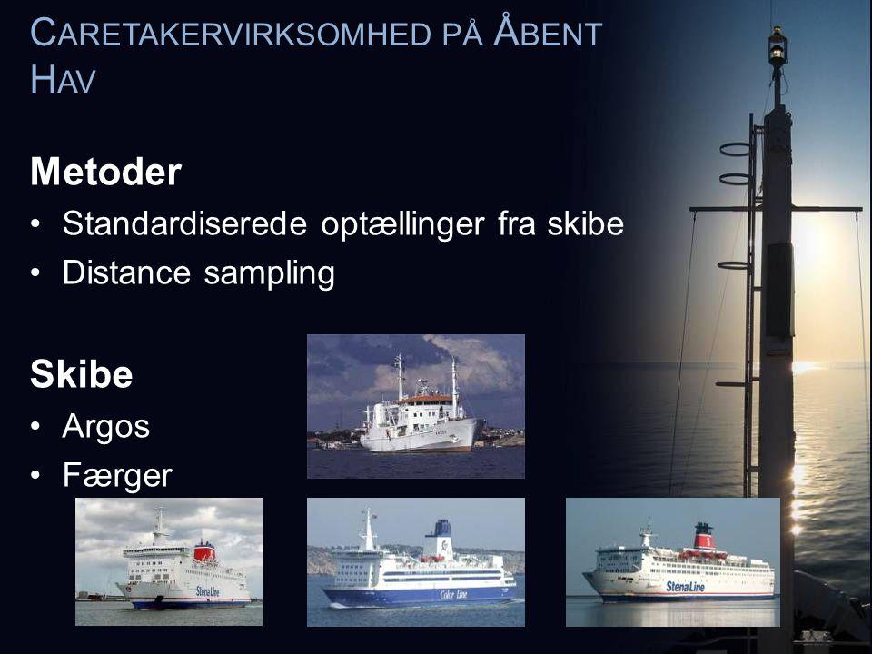 C ARETAKERVIRKSOMHED PÅ Å BENT H AV Metoder •Standardiserede optællinger fra skibe •Distance sampling Skibe •Argos •Færger