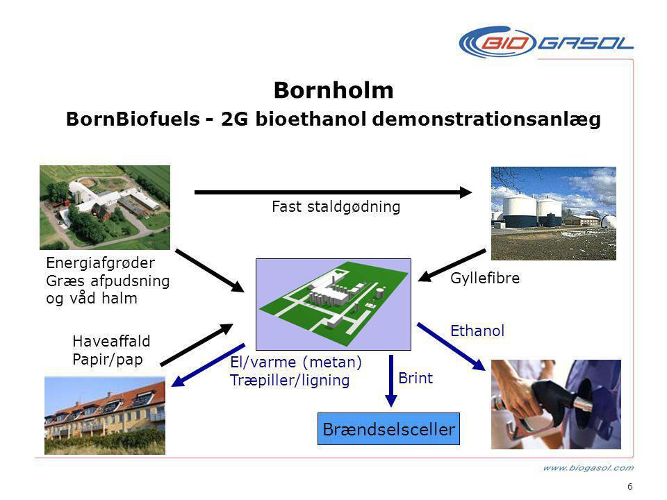 6 Bornholm BornBiofuels - 2G bioethanol demonstrationsanlæg Brændselsceller Gyllefibre Fast staldgødning Energiafgrøder Græs afpudsning og våd halm Haveaffald Papir/pap El/varme (metan) Træpiller/ligning Brint Ethanol