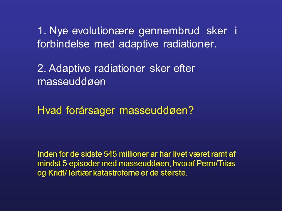 1. Nye evolutionære gennembrud sker i forbindelse med adaptive radiationer. 2. Adaptive radiationer sker efter masseuddøen Hvad forårsager masseuddøen