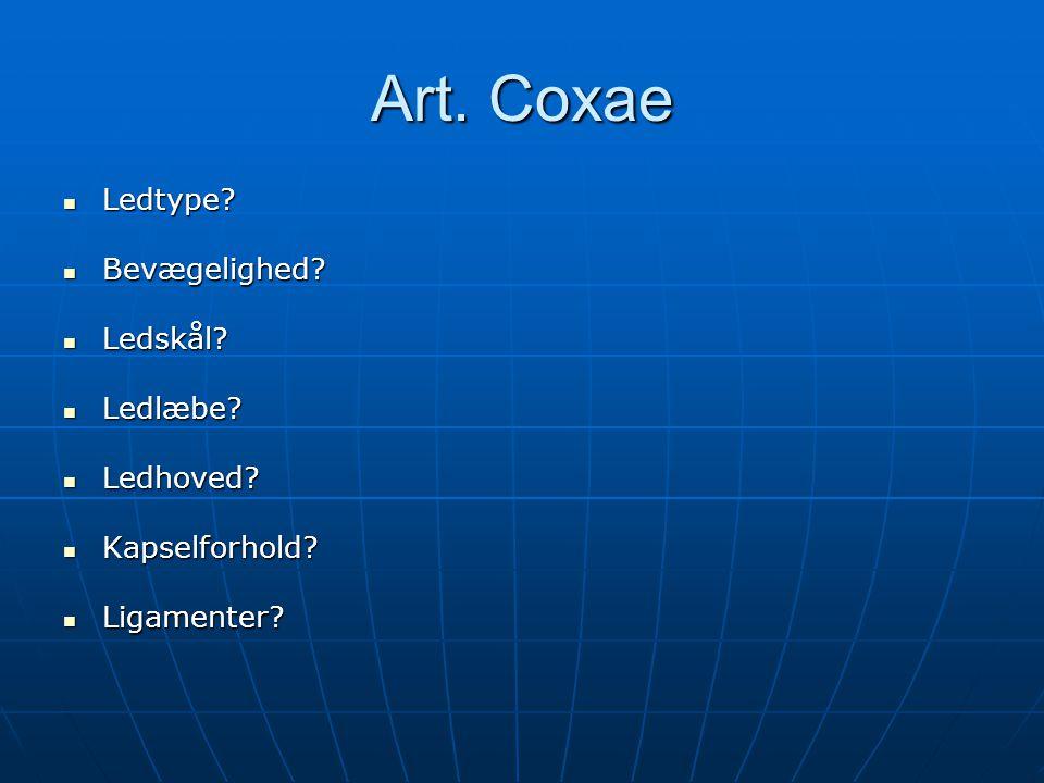 Art.Coxae  Ledtype.  Bevægelighed.  Ledskål.  Ledlæbe.