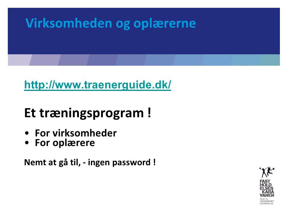Virksomheden og oplærerne http://www.traenerguide.dk/ Et træningsprogram .