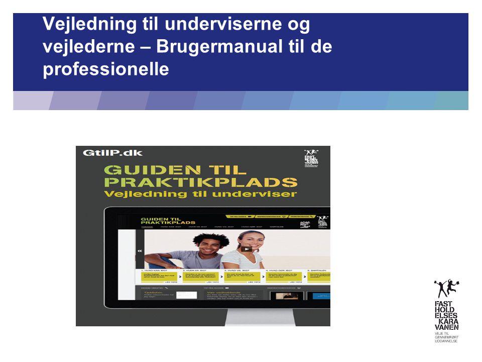 Vejledning til underviserne og vejlederne – Brugermanual til de professionelle 22. juni 2014