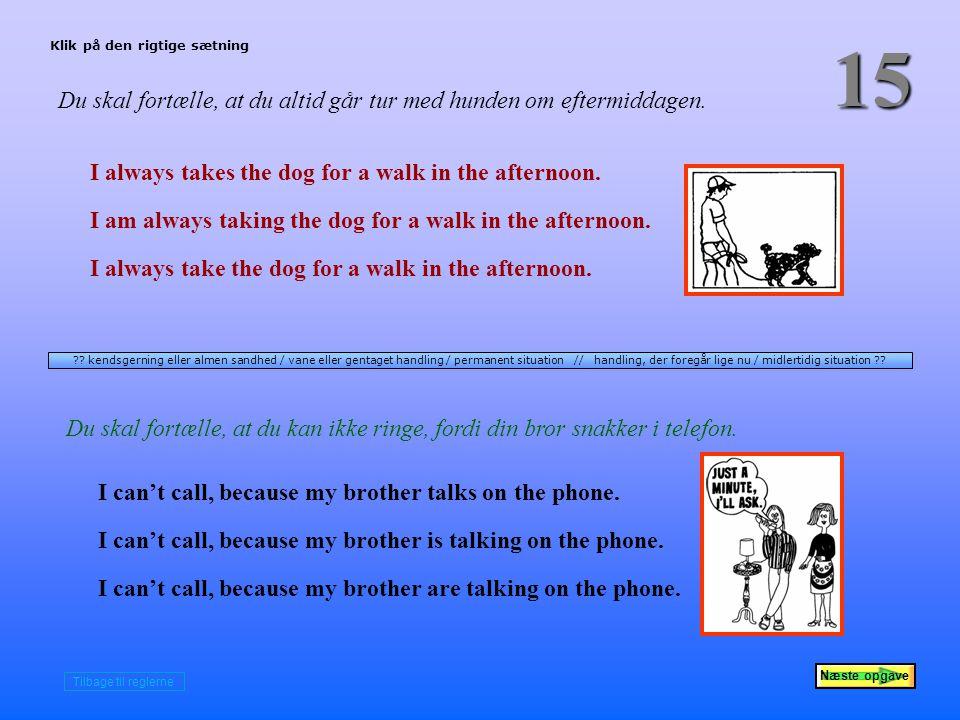 Næste opgave 15 Du skal fortælle, at du altid går tur med hunden om eftermiddagen.