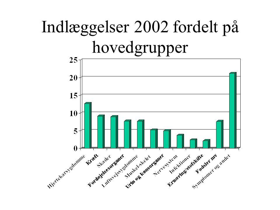 Indlæggelser 2002 fordelt på hovedgrupper