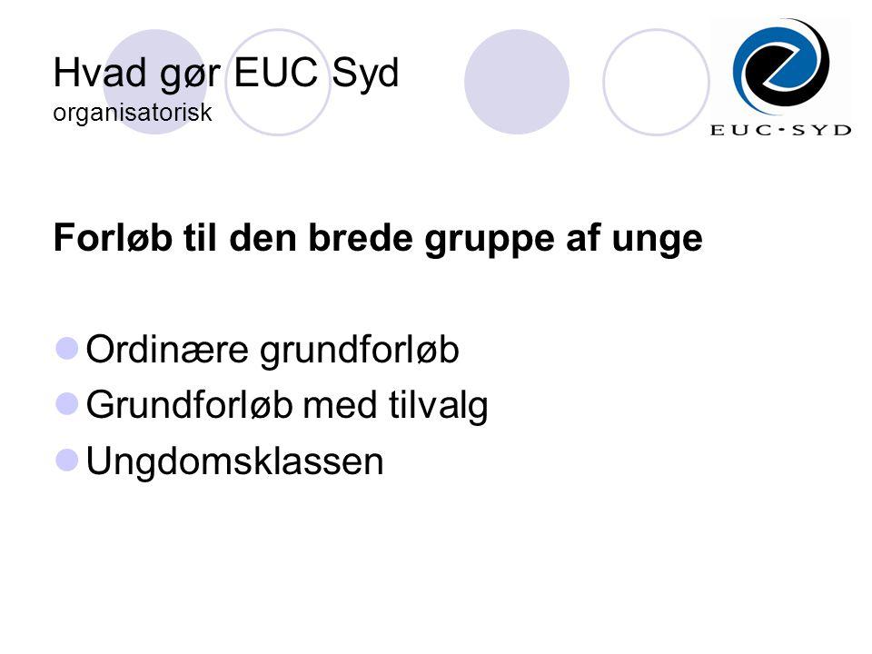 Hvad gør EUC Syd organisatorisk Forløb til den brede gruppe af unge  Ordinære grundforløb  Grundforløb med tilvalg  Ungdomsklassen