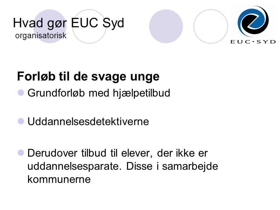Hvad gør EUC Syd organisatorisk Forløb til de svage unge  Grundforløb med hjælpetilbud  Uddannelsesdetektiverne  Derudover tilbud til elever, der ikke er uddannelsesparate.