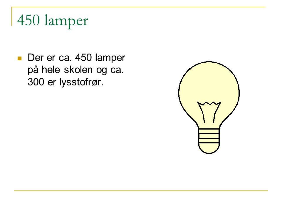 450 lamper  Der er ca. 450 lamper på hele skolen og ca. 300 er lysstofrør.