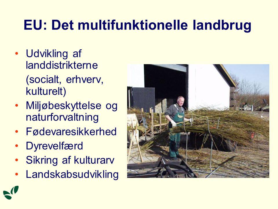 EU: Det multifunktionelle landbrug •Udvikling af landdistrikterne (socialt, erhverv, kulturelt) •Miljøbeskyttelse og naturforvaltning •Fødevaresikkerhed •Dyrevelfærd •Sikring af kulturarv •Landskabsudvikling