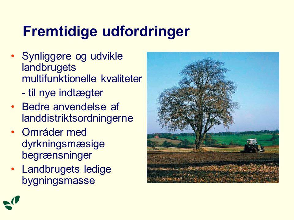Fremtidige udfordringer •Synliggøre og udvikle landbrugets multifunktionelle kvaliteter - til nye indtægter •Bedre anvendelse af landdistriktsordningerne •Områder med dyrkningsmæsige begrænsninger •Landbrugets ledige bygningsmasse