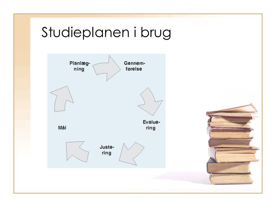 Studieplanen i brug