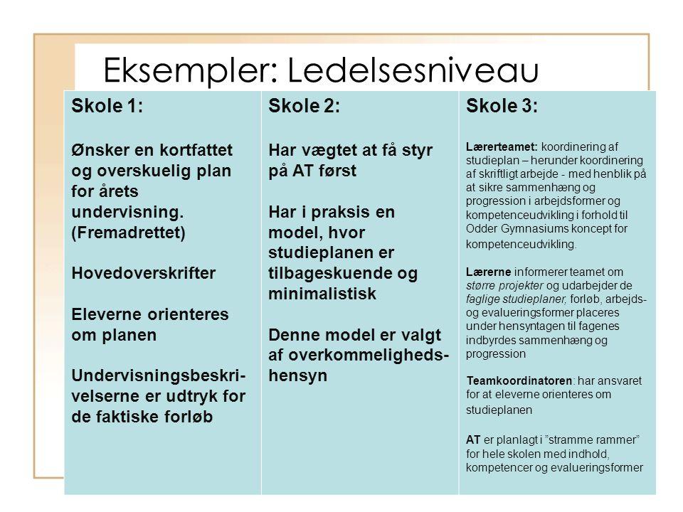 Eksempler: Ledelsesniveau Skole 1: Ønsker en kortfattet og overskuelig plan for årets undervisning.