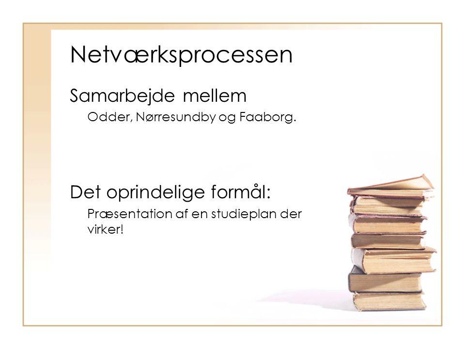Netværksprocessen Samarbejde mellem Odder, Nørresundby og Faaborg.
