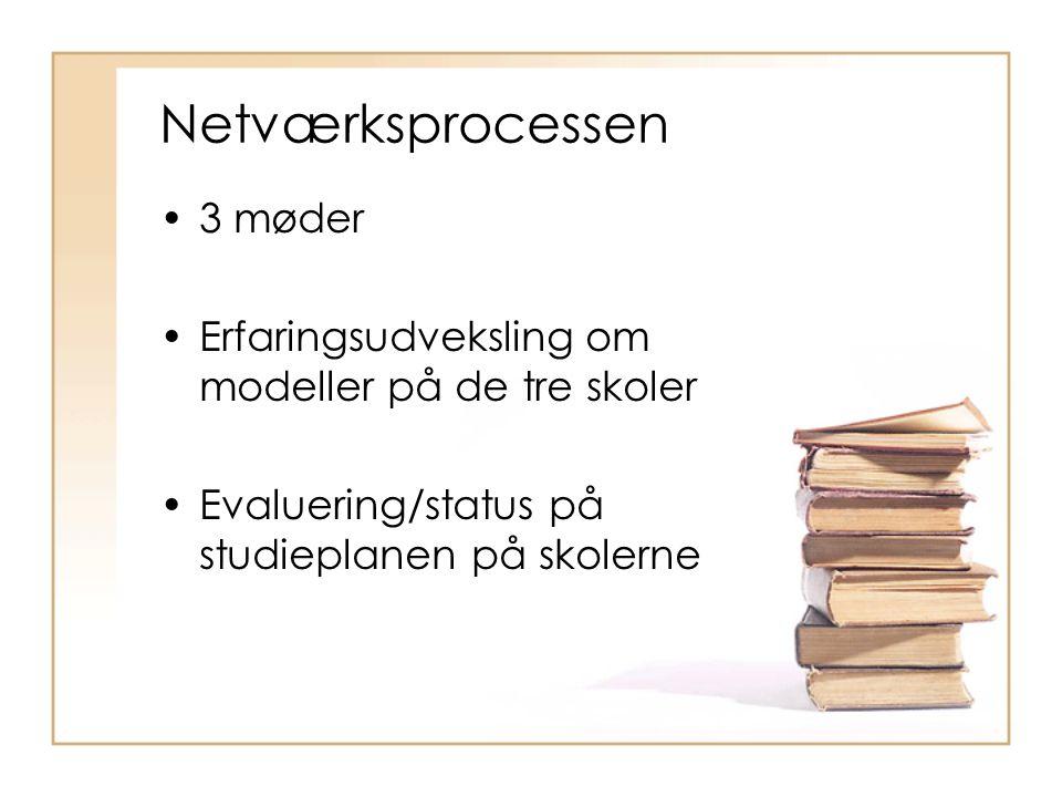 Netværksprocessen •3 møder •Erfaringsudveksling om modeller på de tre skoler •Evaluering/status på studieplanen på skolerne