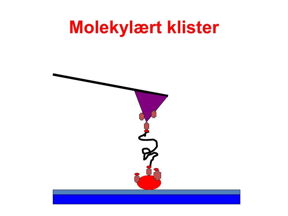 Molekylært klister