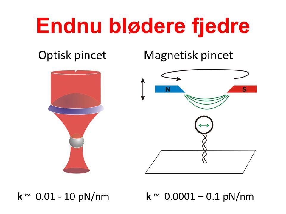 Endnu blødere fjedre Optisk pincet Magnetisk pincet k ~ 0.01 - 10 pN/nmk ~ 0.0001 – 0.1 pN/nm