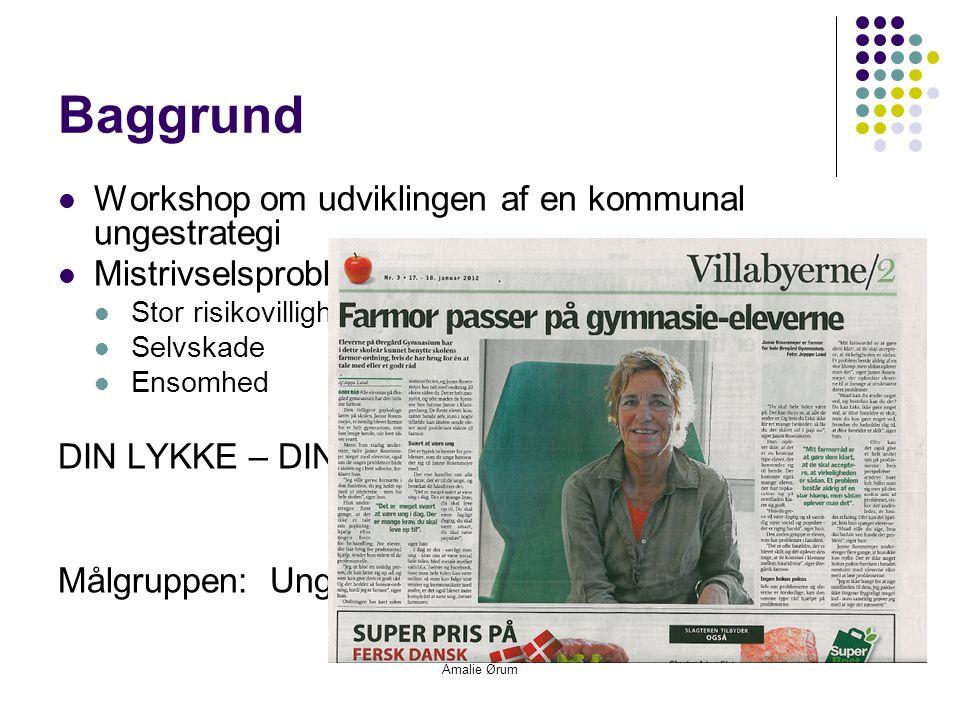 Amalie Ørum Baggrund  Workshop om udviklingen af en kommunal ungestrategi  Mistrivselsproblematikker  Stor risikovillighed  Selvskade  Ensomhed DIN LYKKE – DIN FIASKO Målgruppen: Unge mellem 15 og 25 år