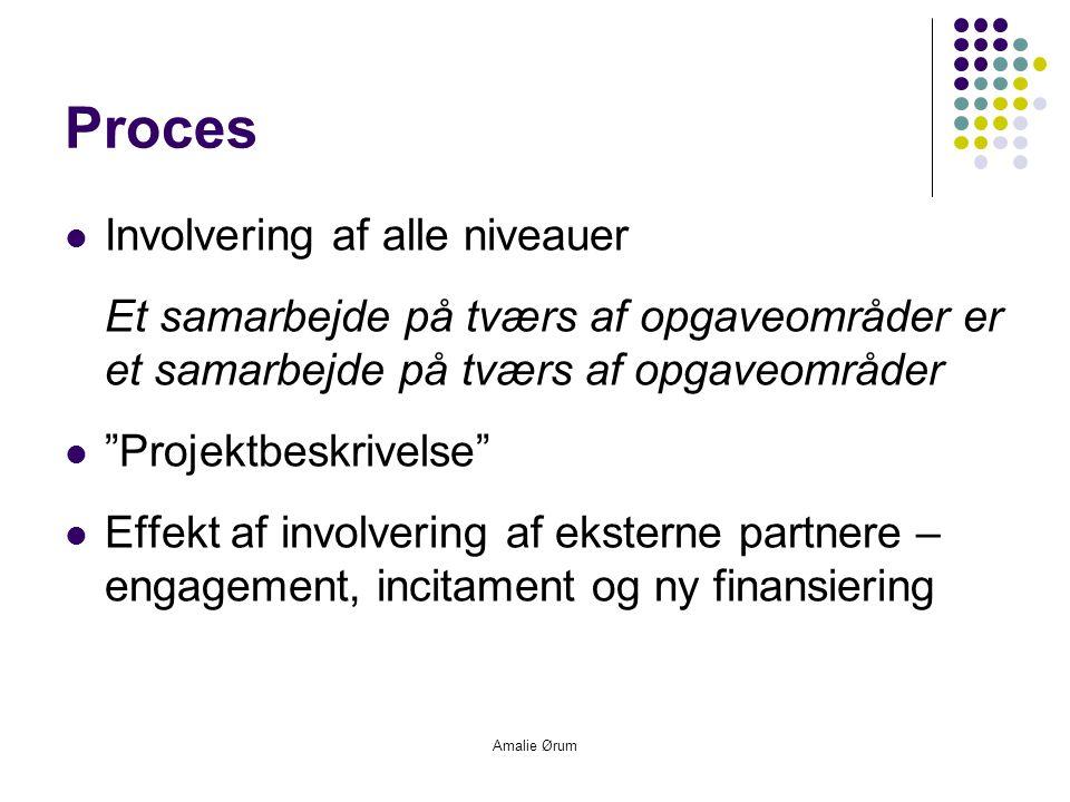Amalie Ørum Proces  Involvering af alle niveauer Et samarbejde på tværs af opgaveområder er et samarbejde på tværs af opgaveområder  Projektbeskrivelse  Effekt af involvering af eksterne partnere – engagement, incitament og ny finansiering