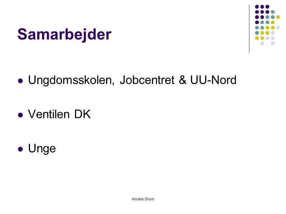 Amalie Ørum Samarbejder  Ungdomsskolen, Jobcentret & UU-Nord  Ventilen DK  Unge