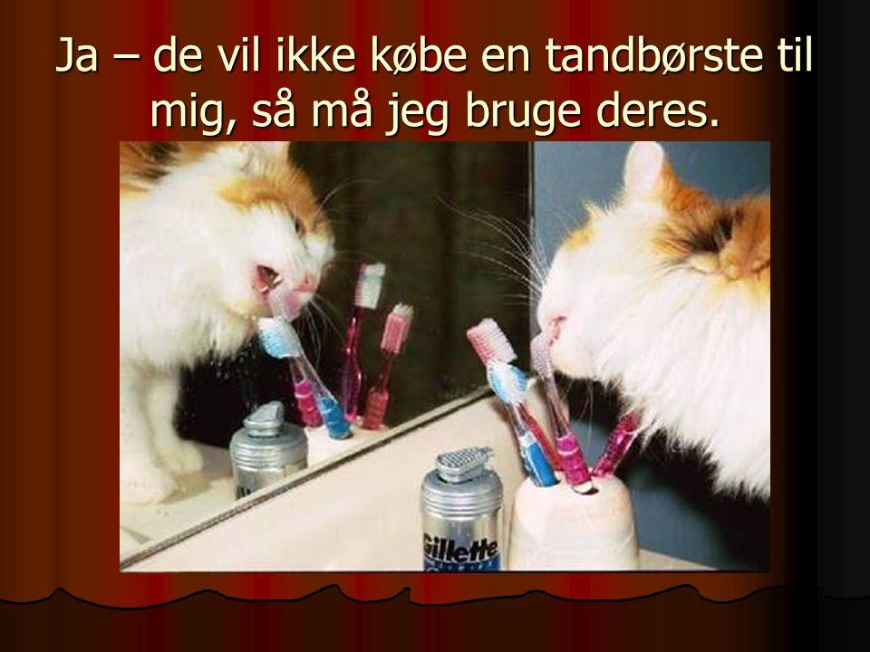 Ja – de vil ikke købe en tandbørste til mig, så må jeg bruge deres.