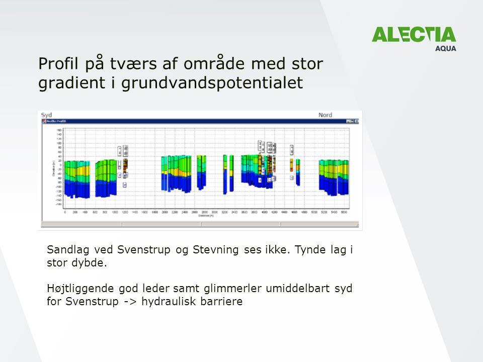 Profil på tværs af område med stor gradient i grundvandspotentialet Sandlag ved Svenstrup og Stevning ses ikke.