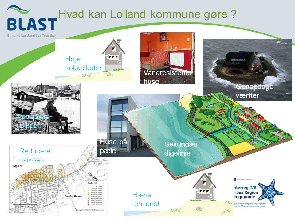 Hvad kan Lolland kommune gøre .