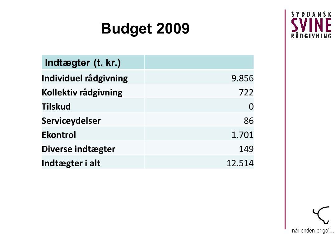 når enden er go'… Budget 2009 Indtægter (t.