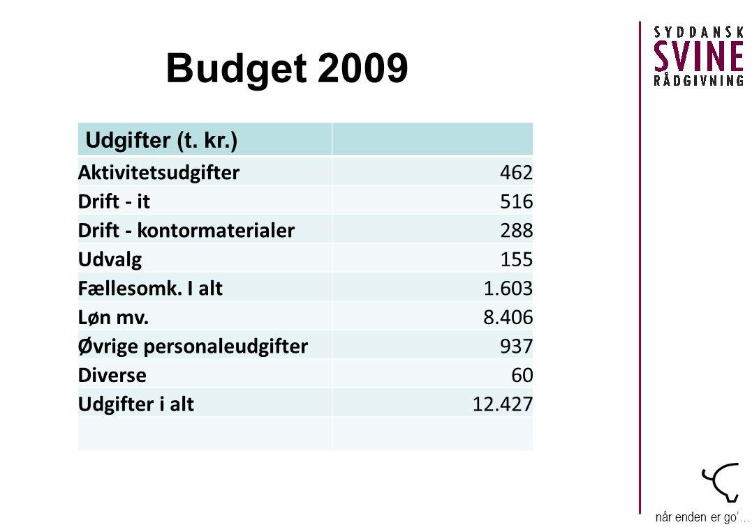 når enden er go'… Budget 2009 Udgifter (t.