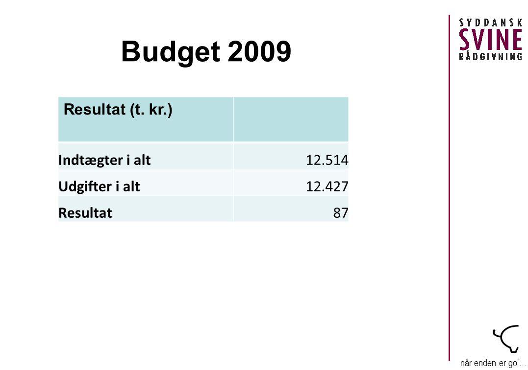 når enden er go'… Budget 2009 Resultat (t.