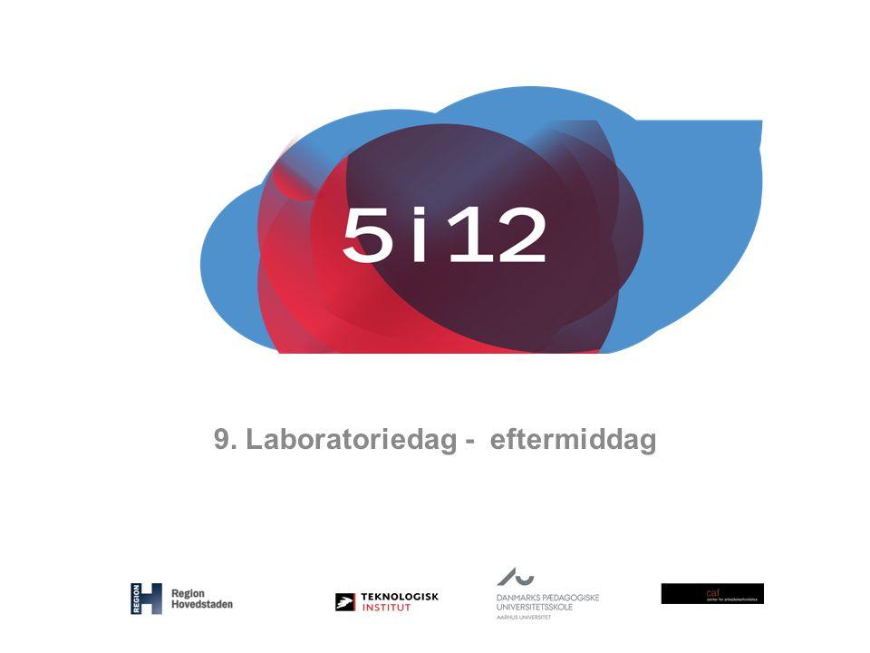 9. Laboratoriedag - eftermiddag