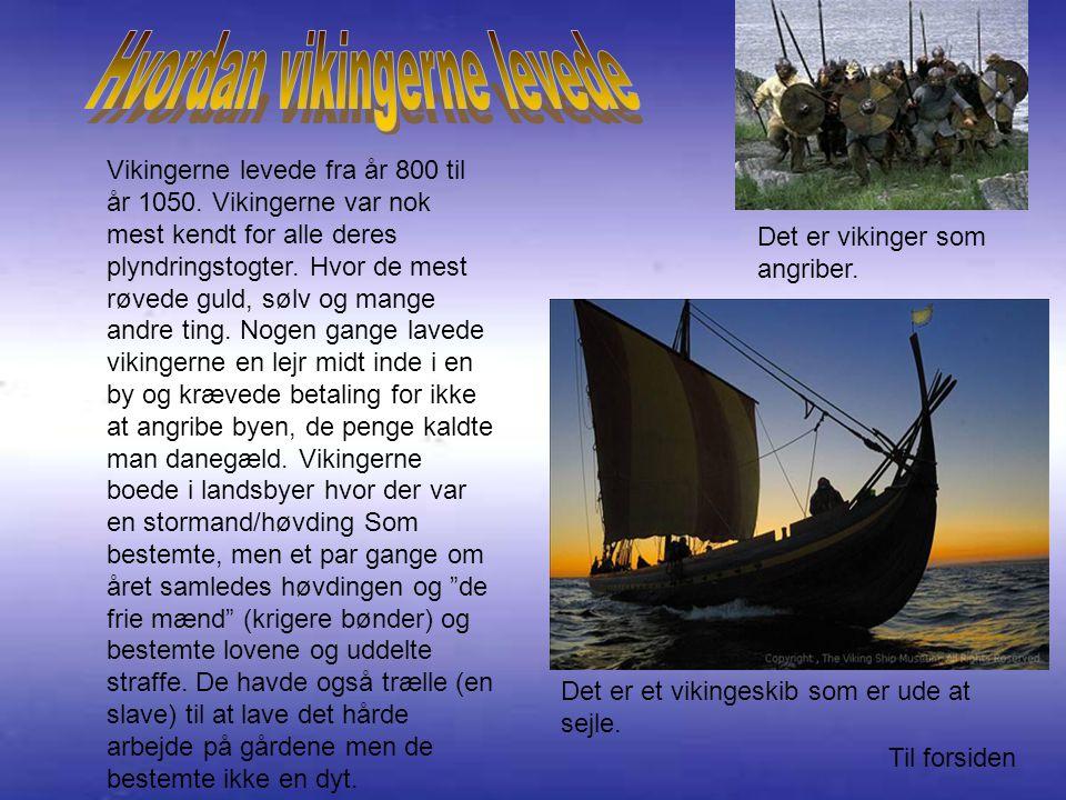 Vikingerne levede fra år 800 til år 1050.