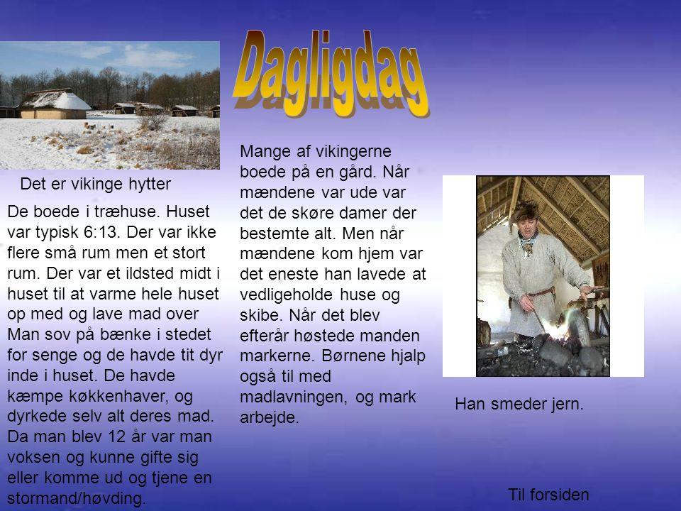 Mange af vikingerne boede på en gård.Når mændene var ude var det de skøre damer der bestemte alt.