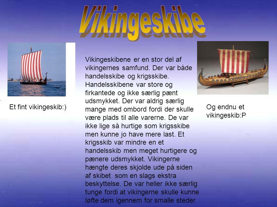 Vikingeskibene er en stor del af vikingernes samfund.