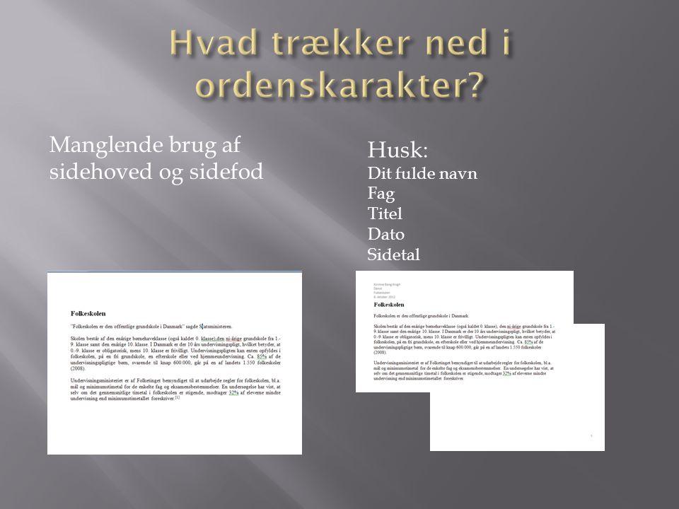Manglende brug af sidehoved og sidefod Husk: Dit fulde navn Fag Titel Dato Sidetal