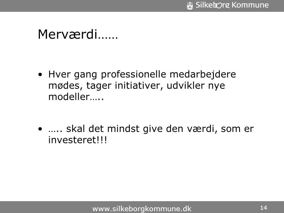 Merværdi…… •Hver gang professionelle medarbejdere mødes, tager initiativer, udvikler nye modeller…..